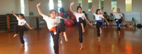 Club Physical kung fu class